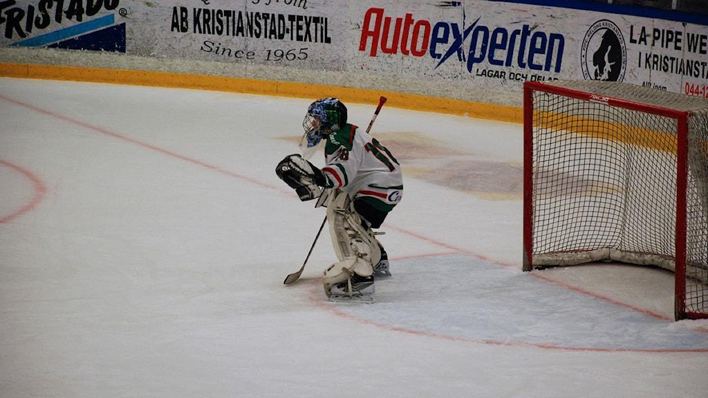 ishockey trelleborg