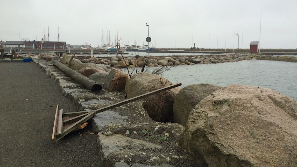 Skillinge harbour, where the boat is said to have arrived. Photo: Malin Rimfors/Sveriges Radio