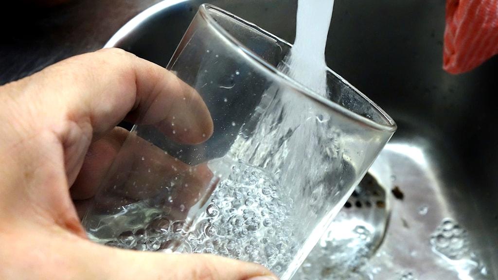 Vatten rinner från en kran i ett dricksglas