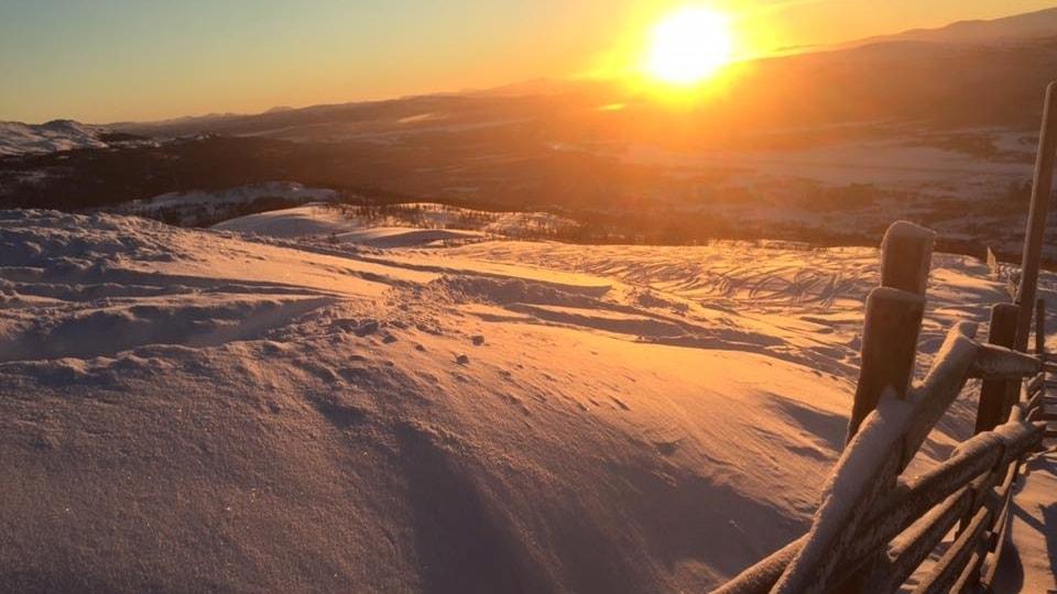 Nyår i Hemavan och årets bästa naturupplevelser