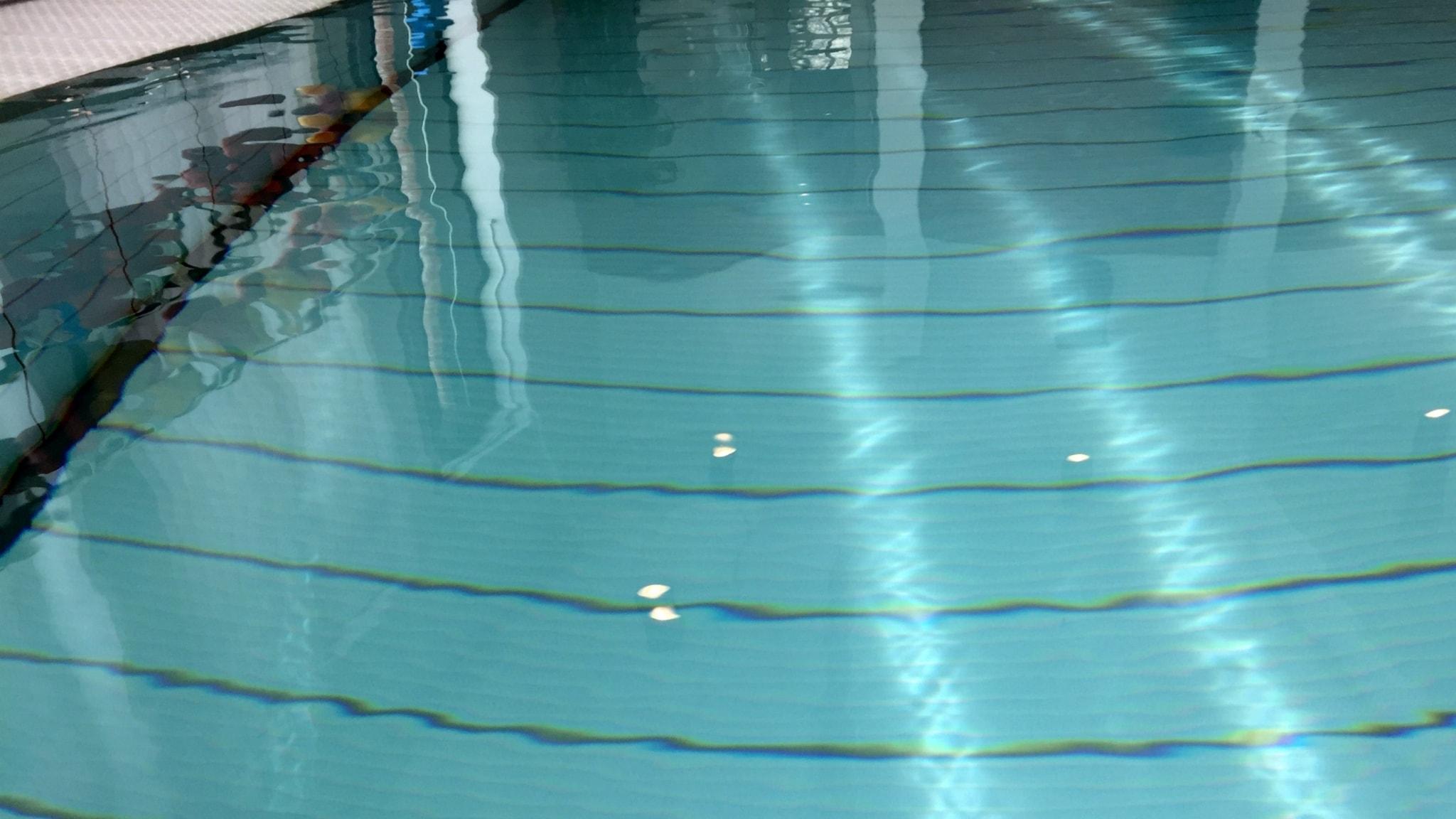 Andas in klor pool
