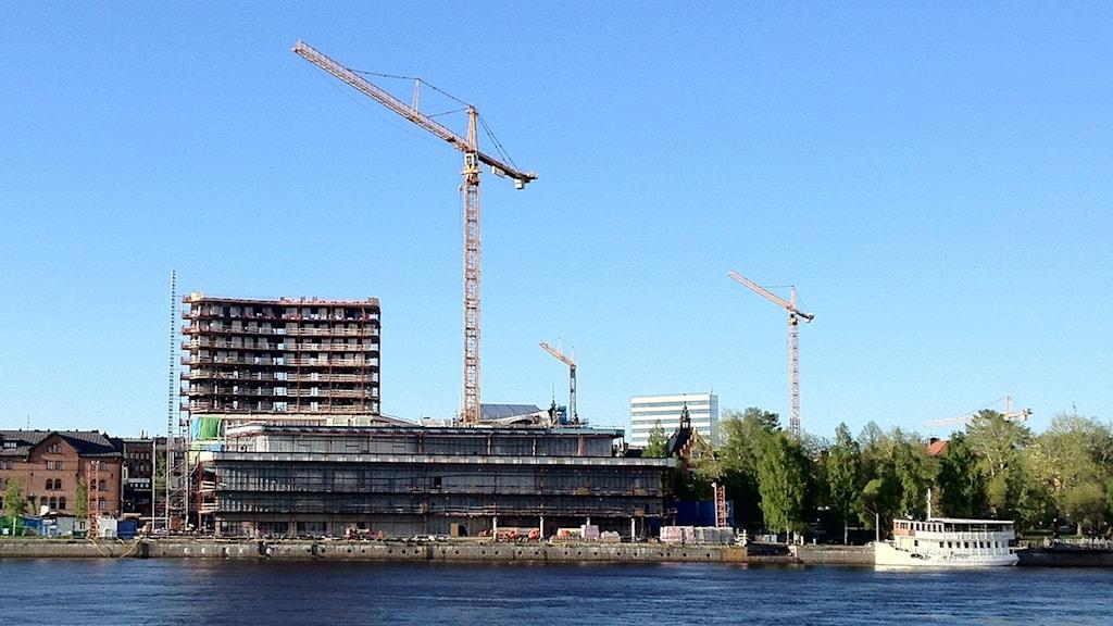pengar bordell rida i Umeå