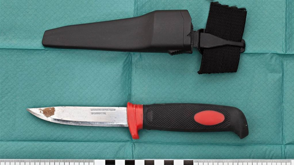 Knife attacks and gunshot wounds on the rise radio for Top knife the art craft of trauma surgery