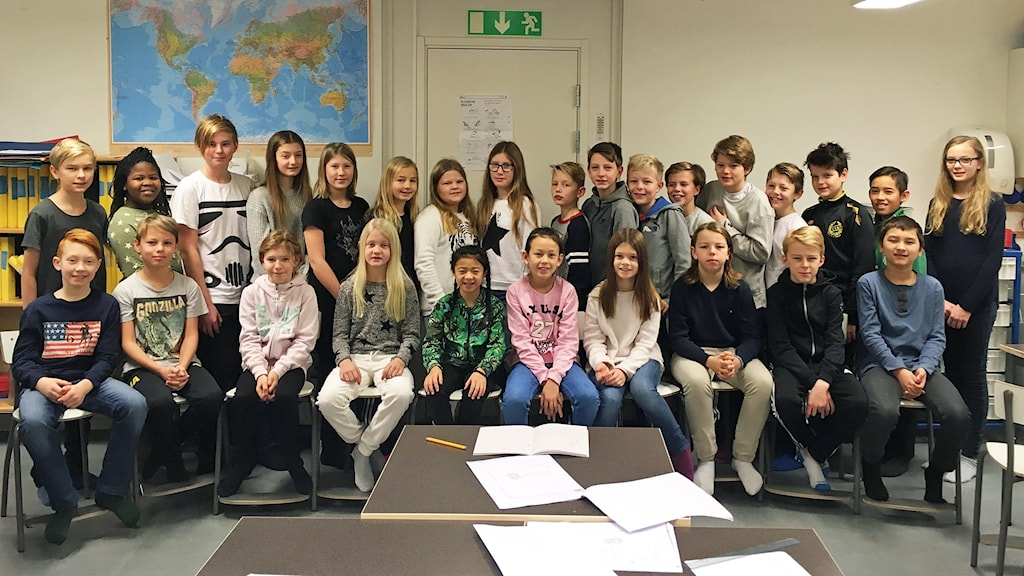 rönnbyskolan västerås