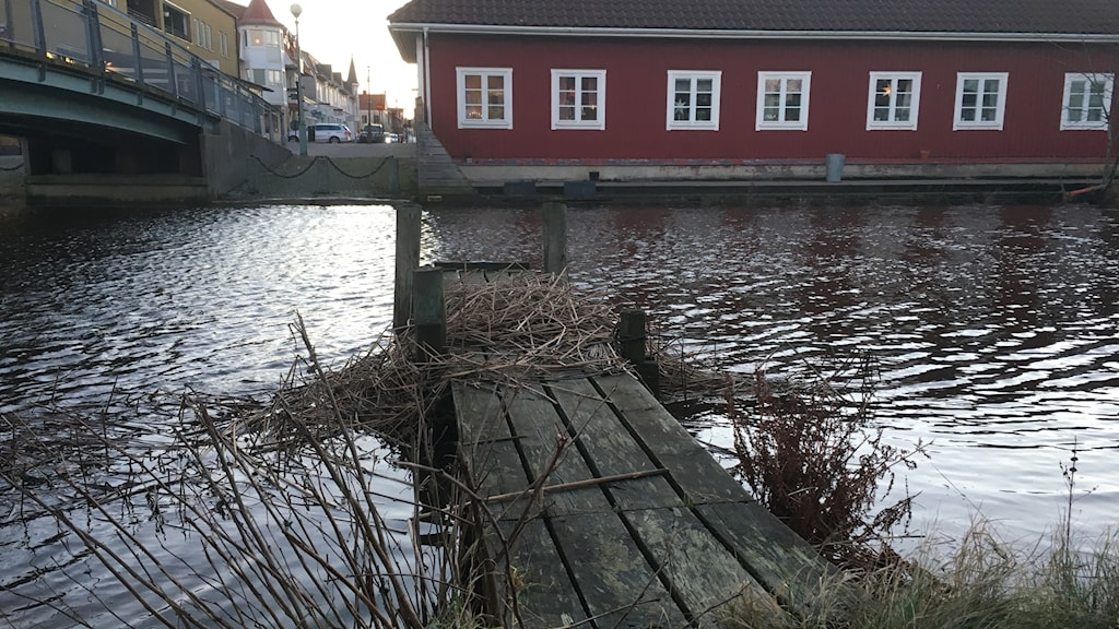 Water levels of rivers including Kungsbackaån rose greatly