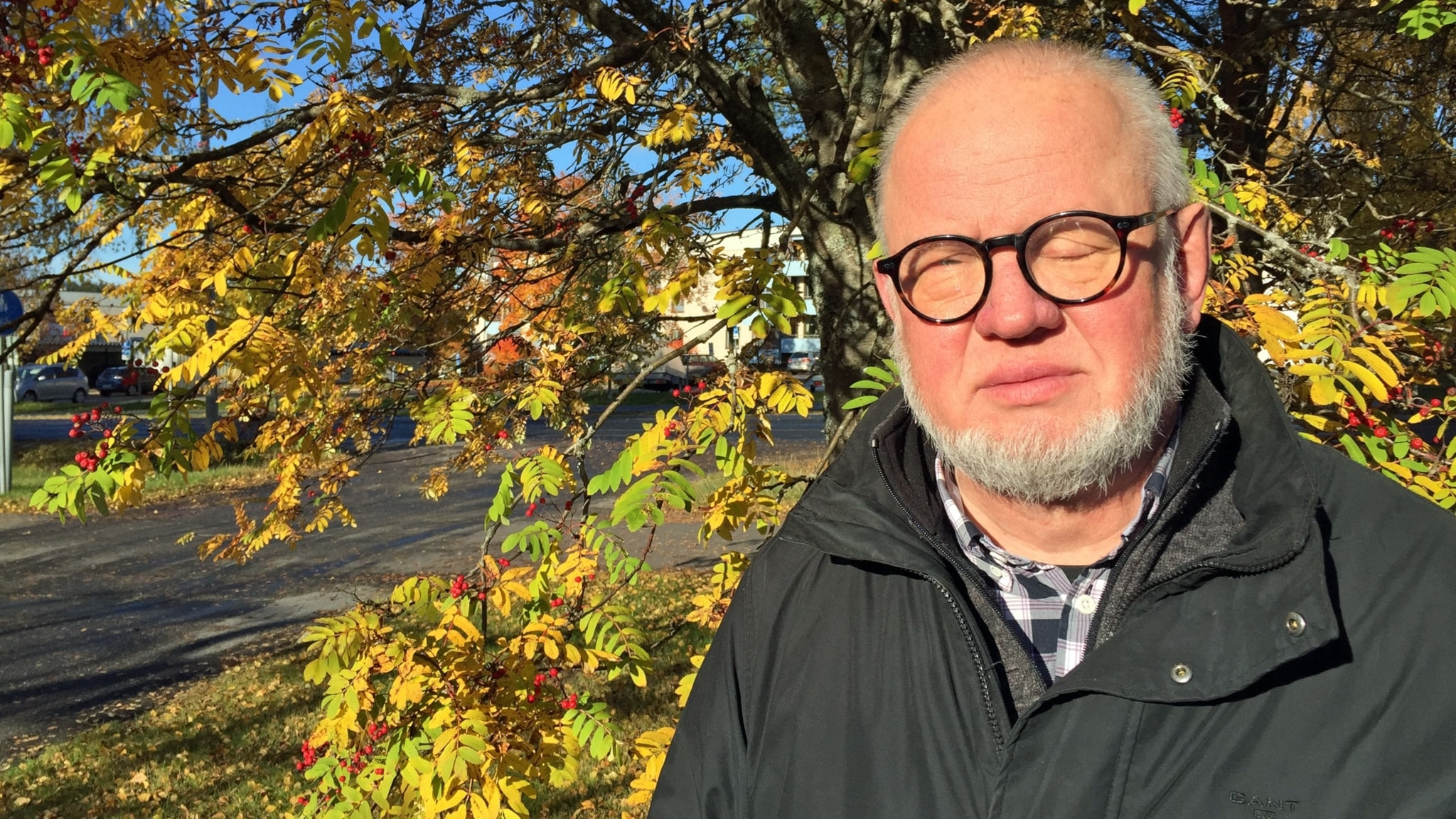 Syndernas förlåtelse - Anders Dahlqvist