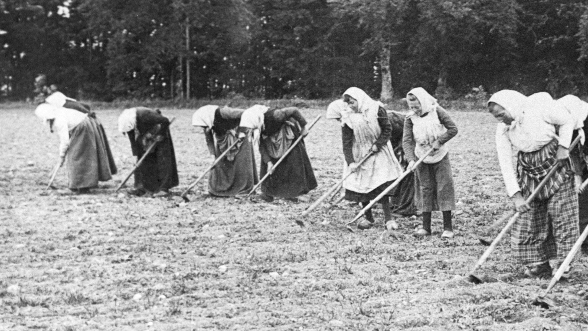 Bonnfruar på kurs 1938