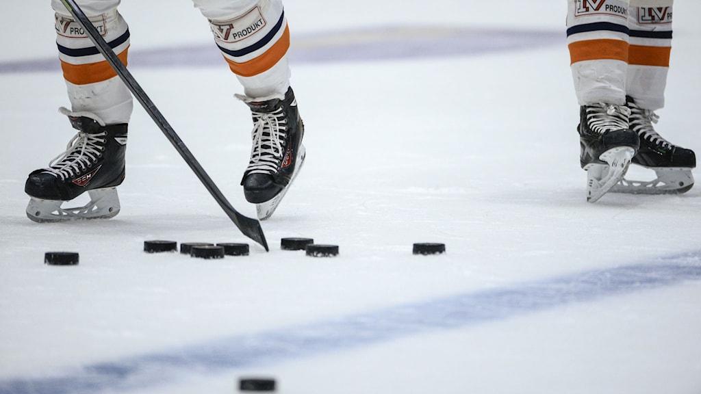 bollnäs ishockey