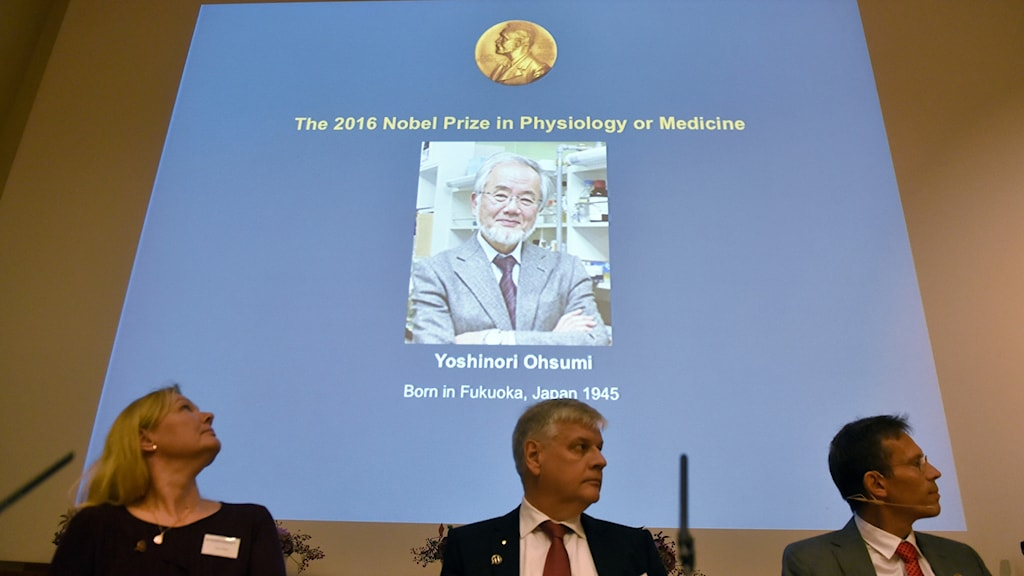 Cell biologist Yoshinori Ohsumi has won the Medicine Nobel for 2016.