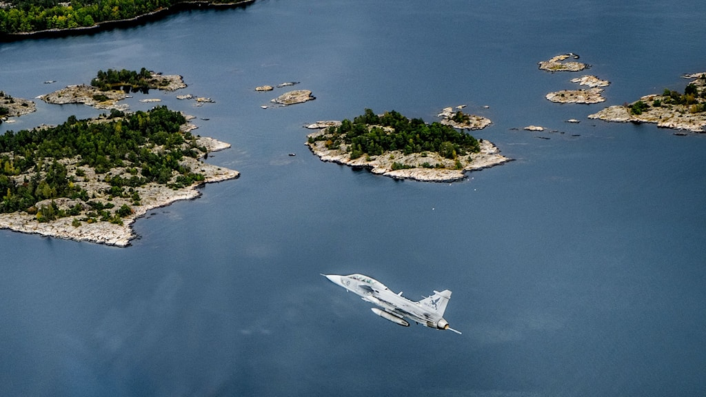 A JAS Gripen plane in the air. File photo: Magnus Hjalmarson Neideman/SvD/TT.