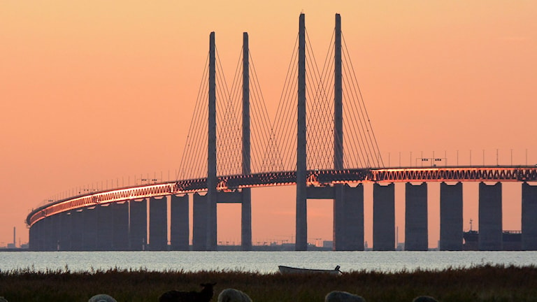 The Öresund bridge. Photo: Johan Nilsson / TT.