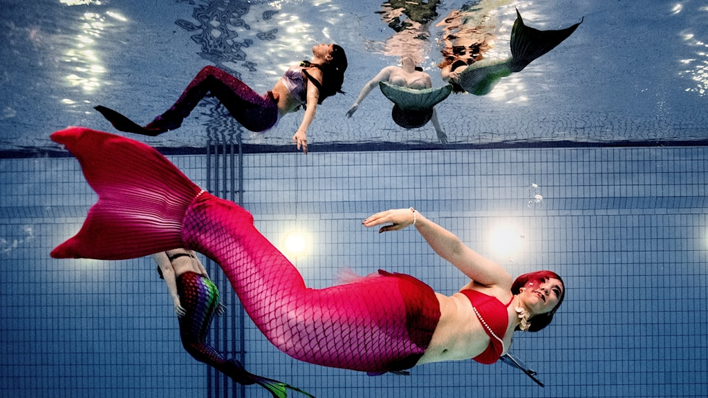 Tuesday night in Jönköping. Every Tuesday, 30 members of a citizens' association meet at the Rosenlund Bath House to swim like mermaids.