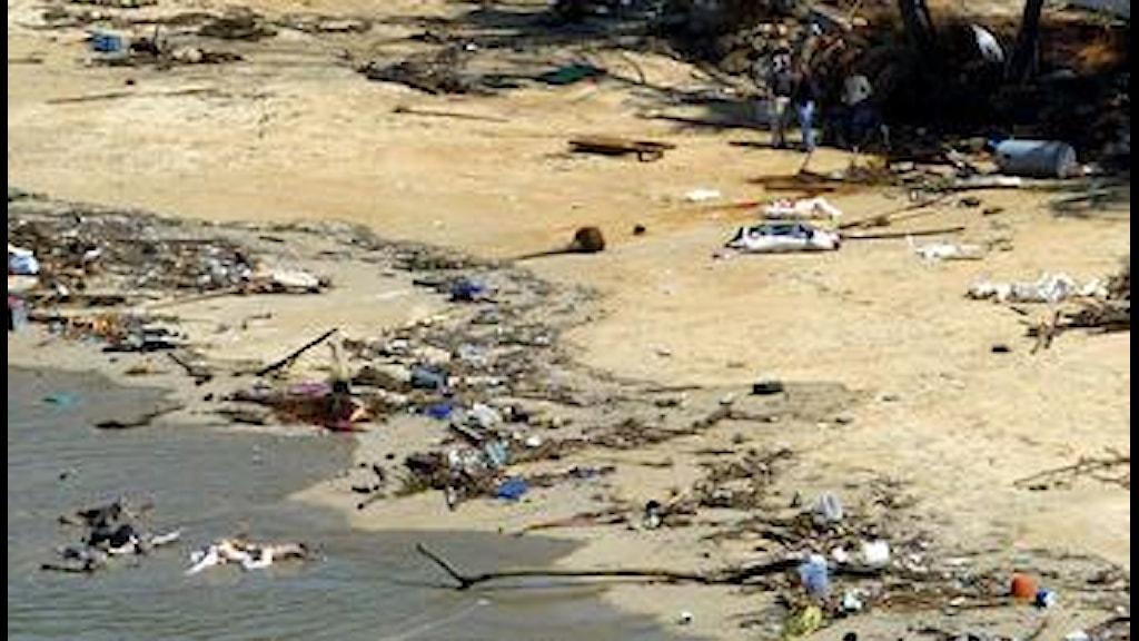Tsunami victims remembered on 14th anniversary | India