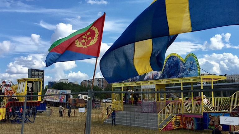 Eritrean and Swedish flag