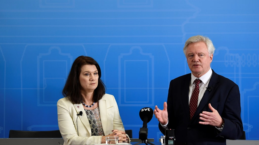 Ann Linde and David Davis