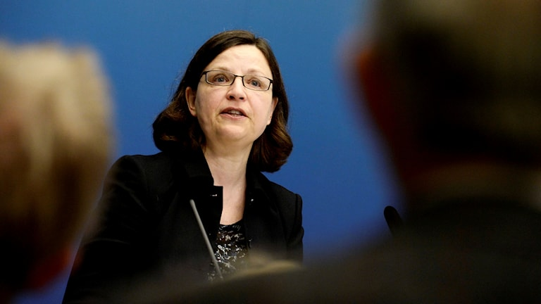Sweden's new minister for upper Secondary school and adult education. Photo: Janerik Henriksson/TT
