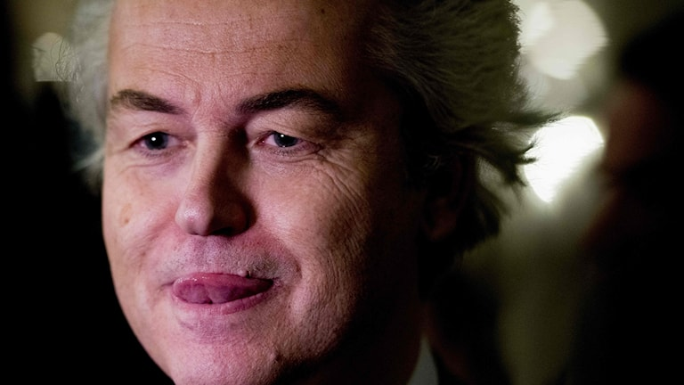 Freedom Party leader Geert Wilders speaks to media on the evening after the election.