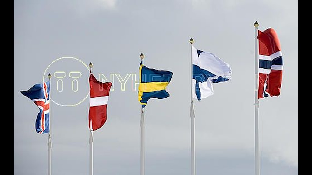 Flags of the five nordic states. Photo: TT