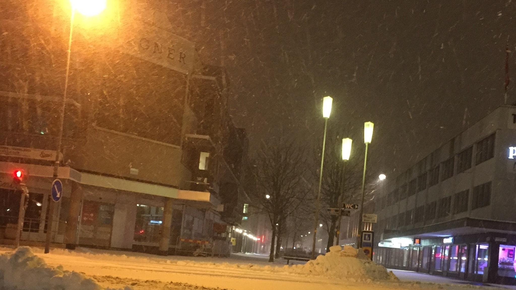 Snöiga vägar, julgranar och Vi i femman