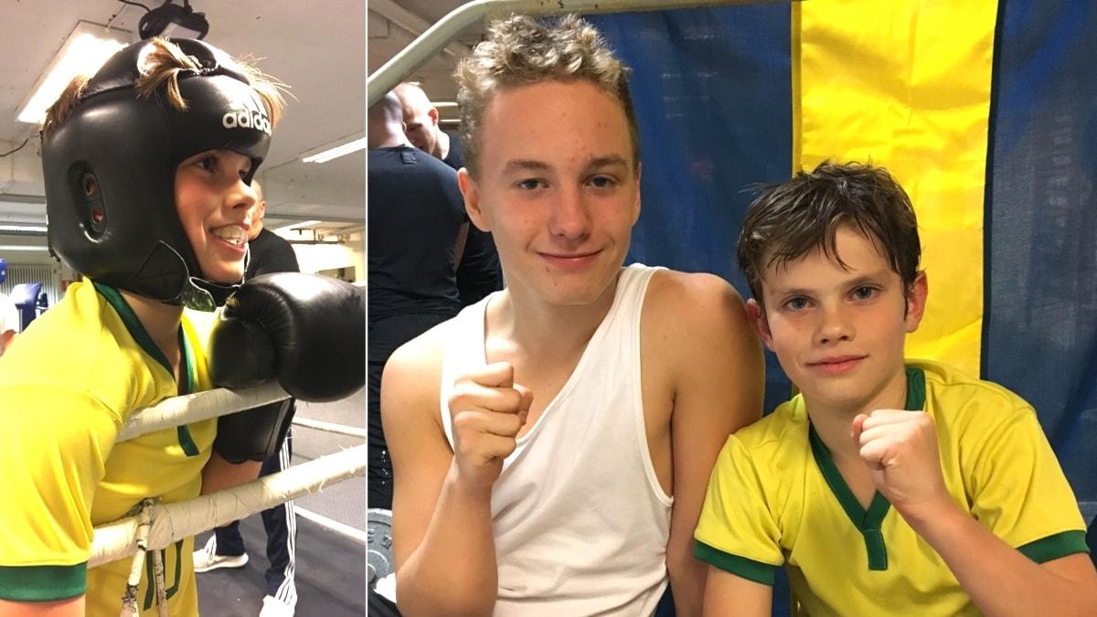 Hur hårt får man slå i boxning?