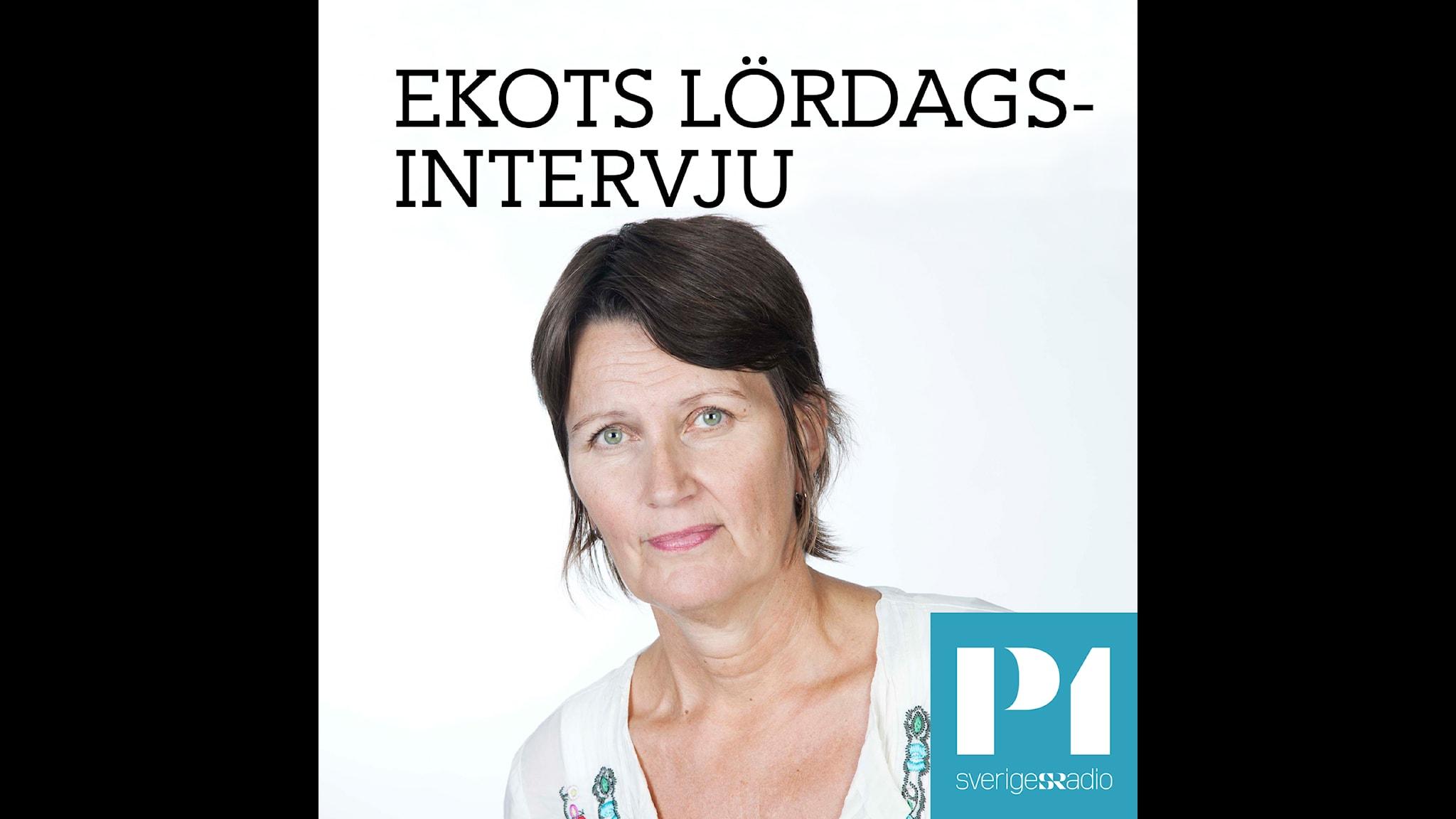 Heléne Fritzon (S) - hur undvika ett skuggsamhälle i Sverige?