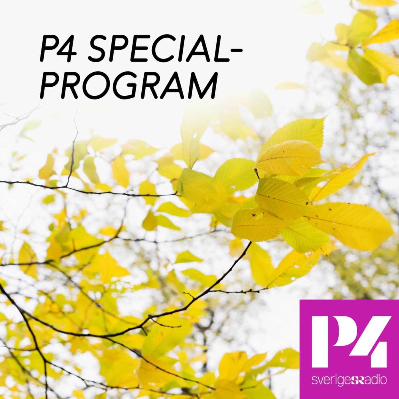 Specialprogram i P4