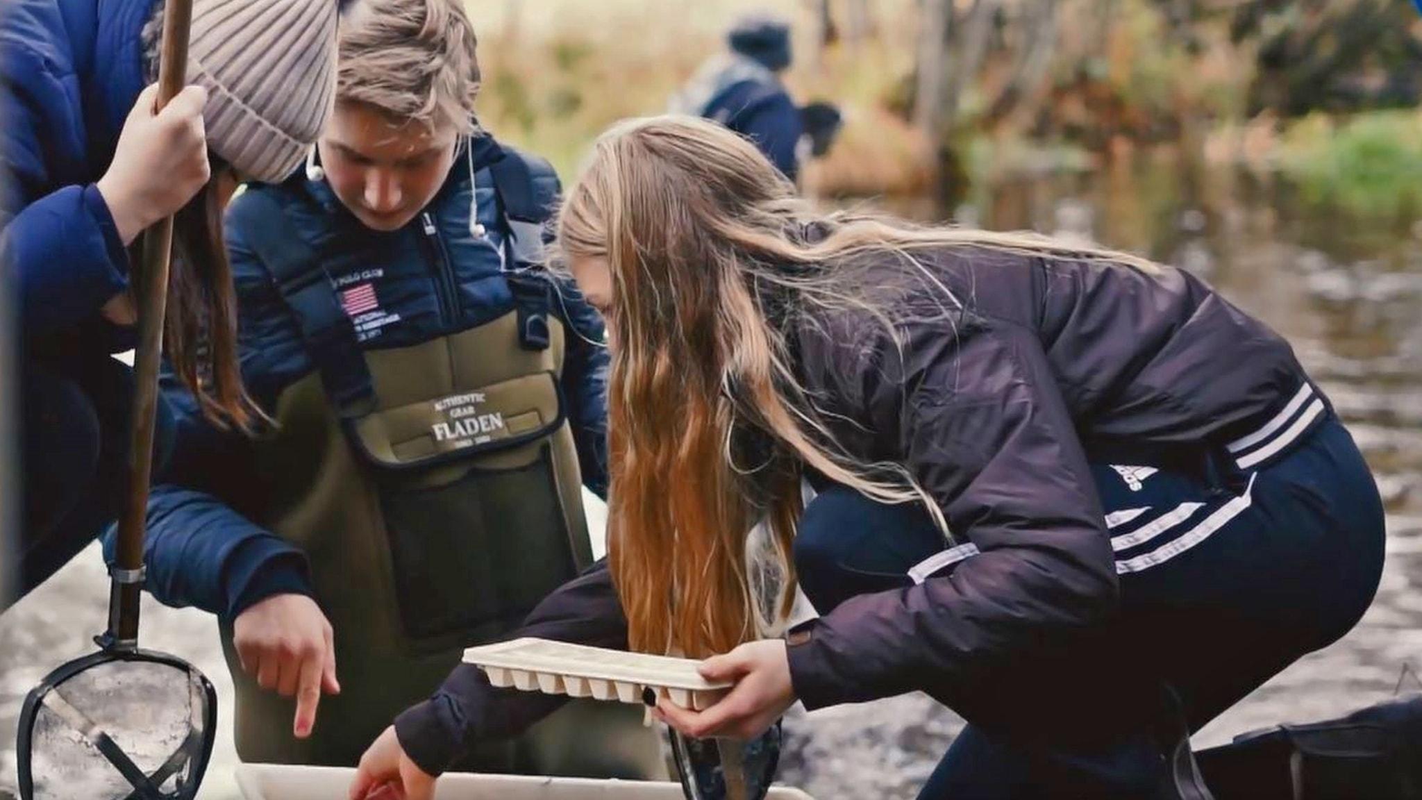 Elever skippar skolbänken för att kolla in naturen