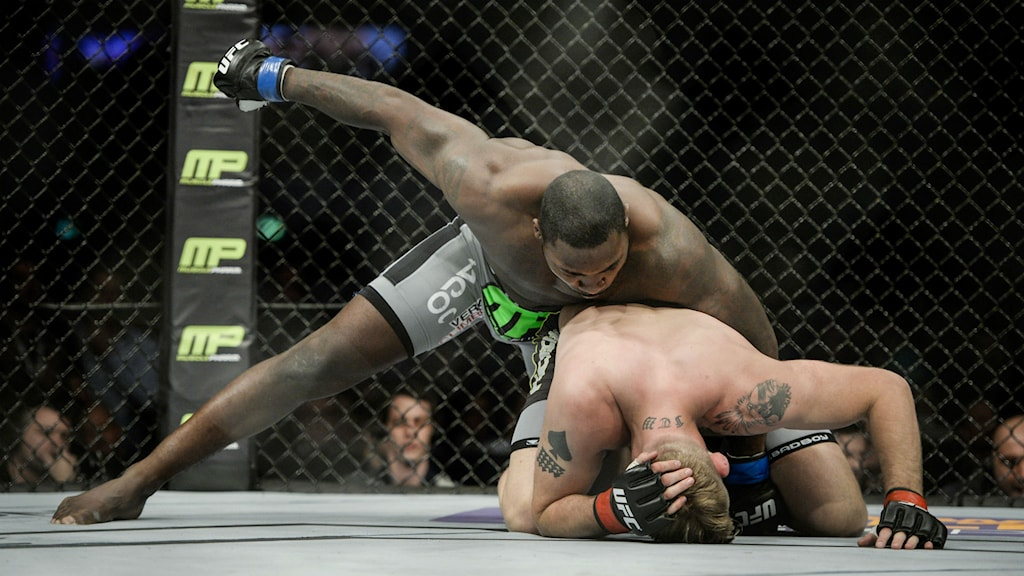 Mixed martial arts. Foto: Jessica Gow/TT.