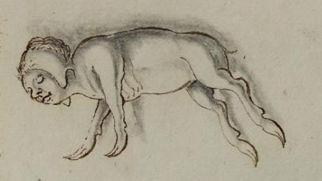 Möt 1600-talets monsterkramare