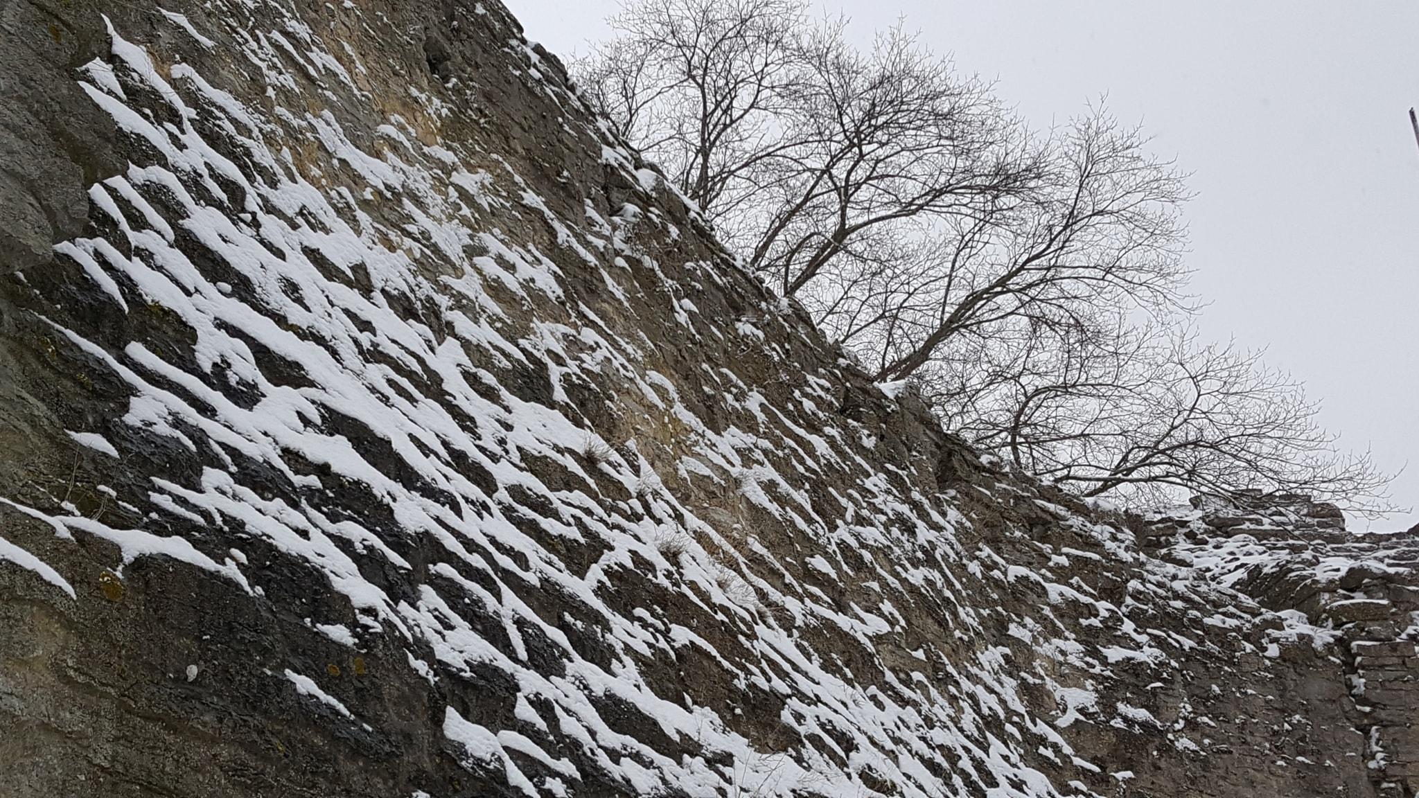 Snöns ljus i gråa mars