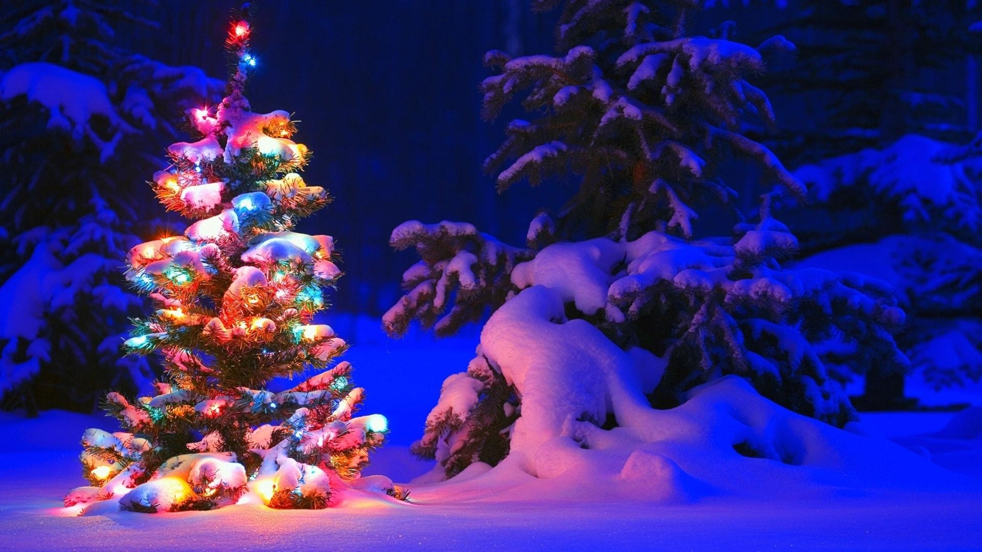 Julaftonsmorgon = Söndagsmorgon