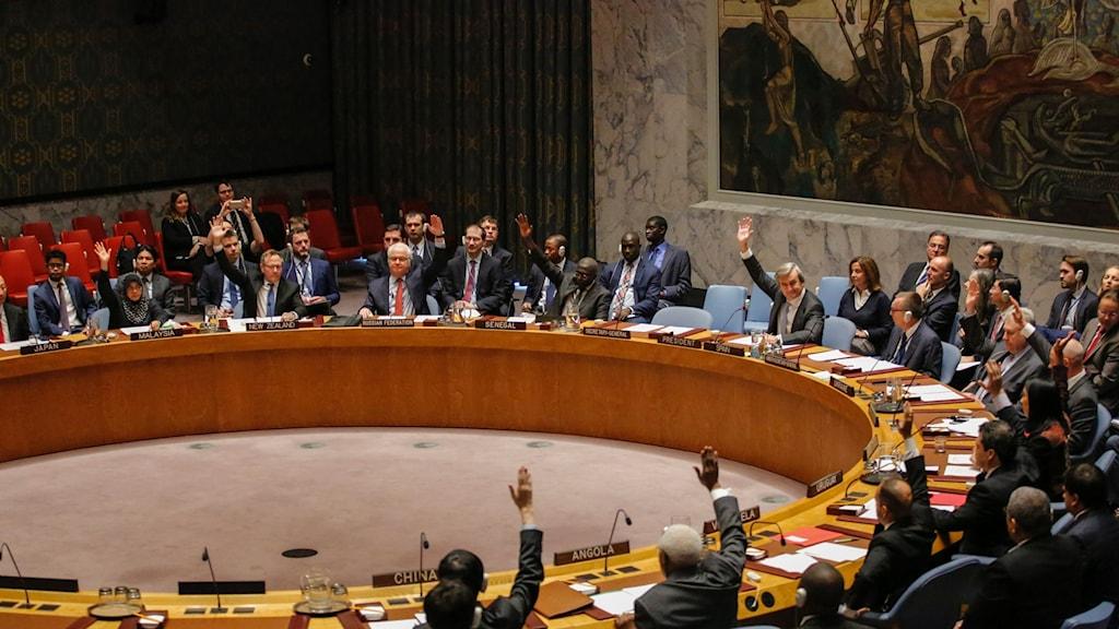 sverige säkerhetsrådet