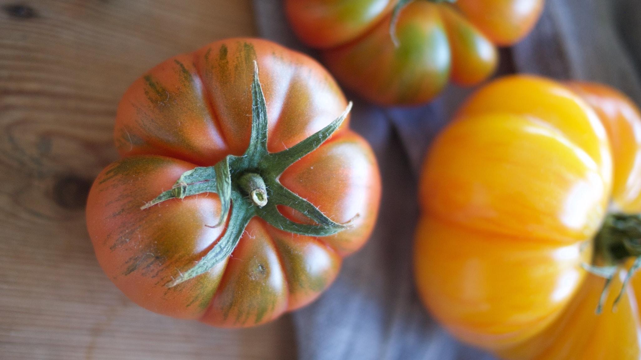 Del 2 - Tomat