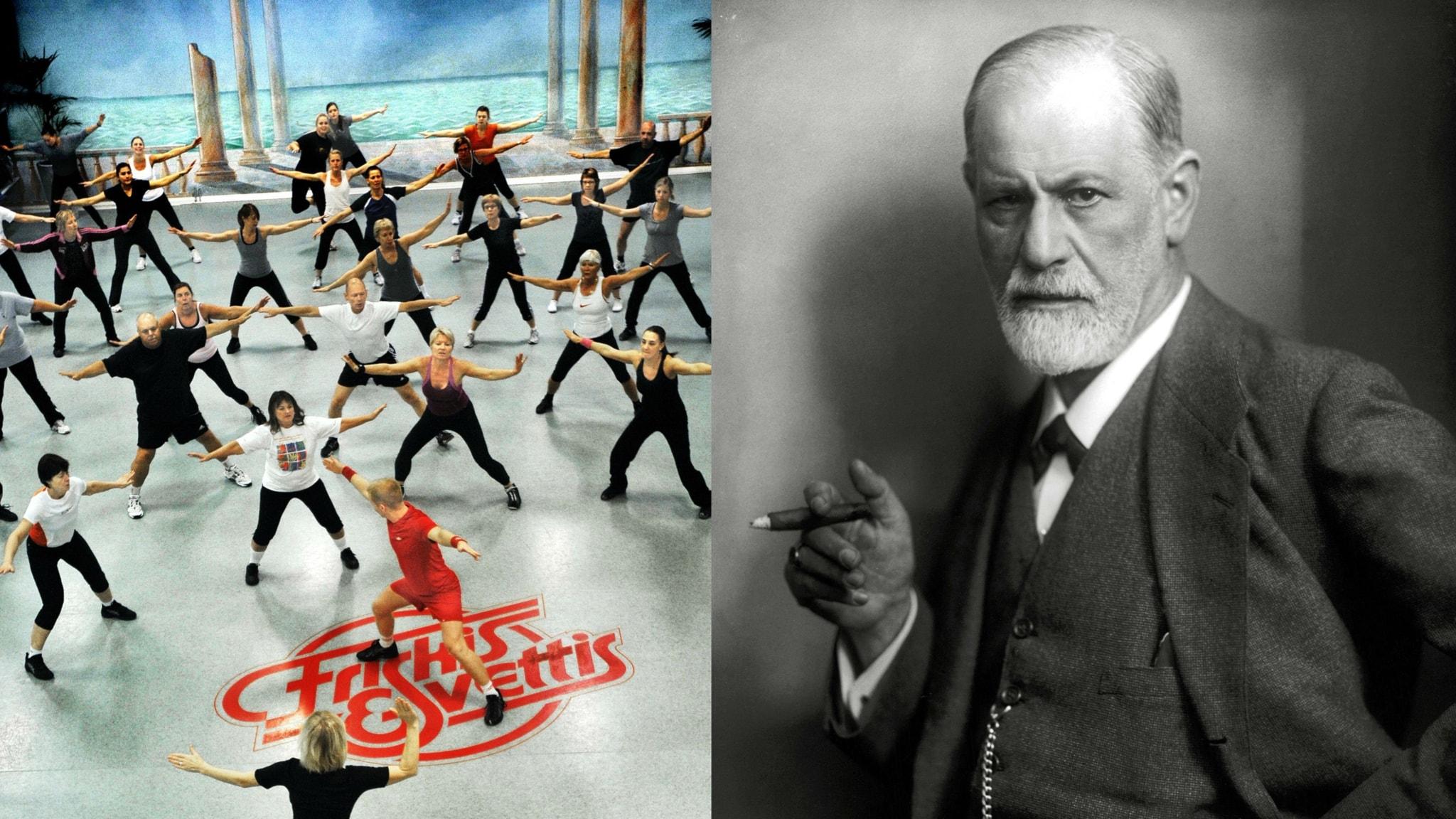 Försvarsmekanismer 1: Med Freud på Friskis & svettis