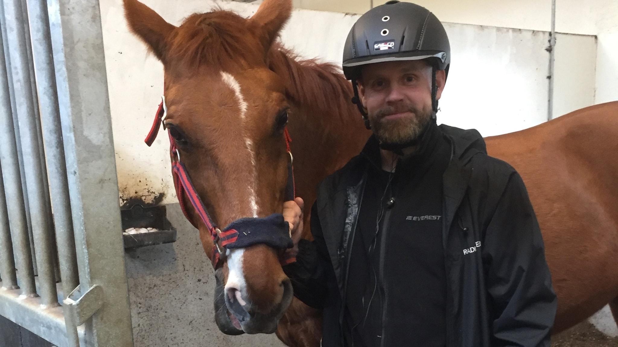 Ska vi verkligen ha en sån där stor häst?
