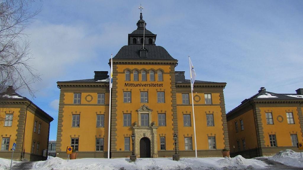 avsugning i stockholm sexleksaker östersund