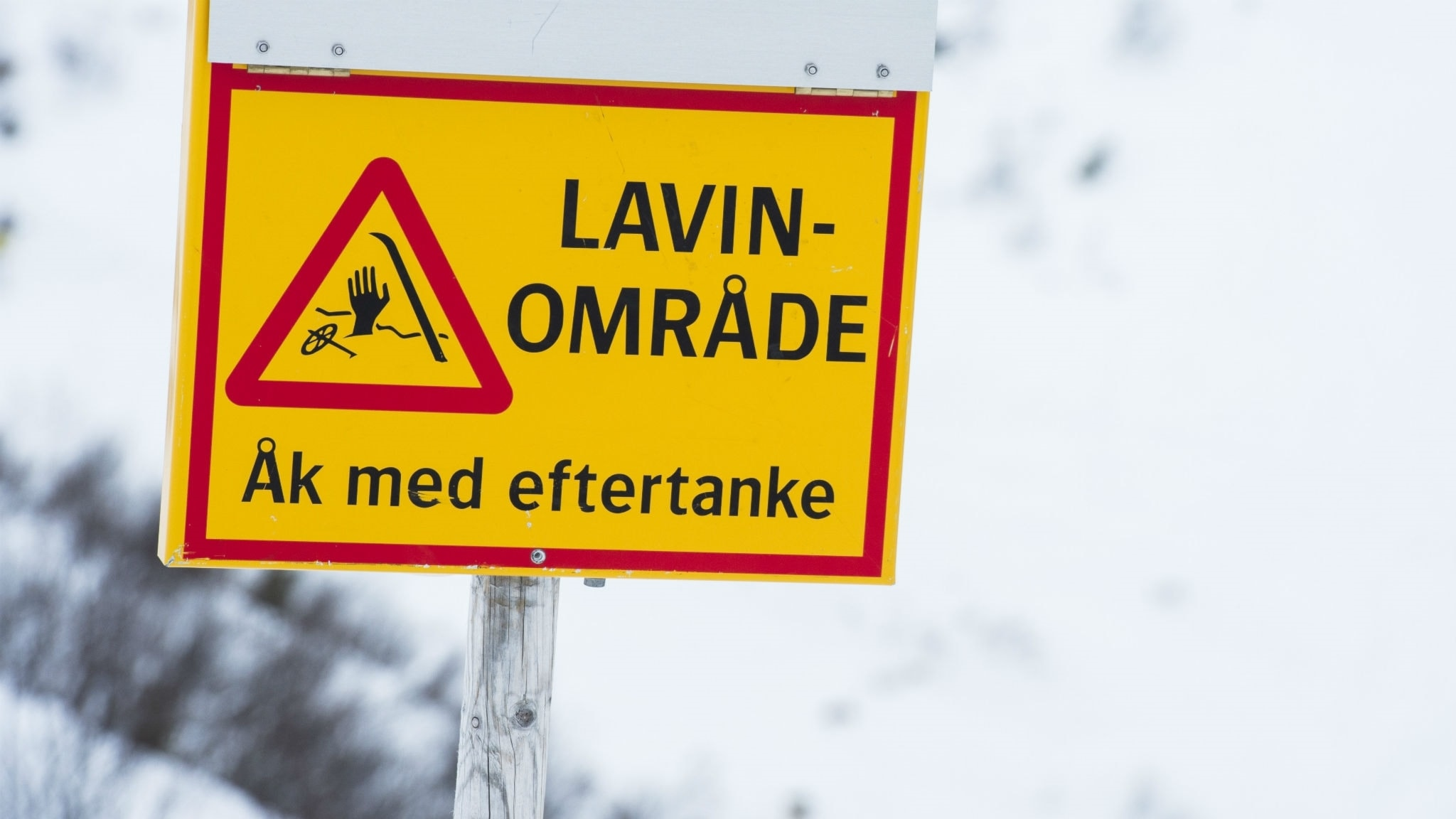 Stor lavinfara i svenska fjäll