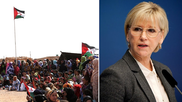 Photos: TT Montage: Swedish Radio.
