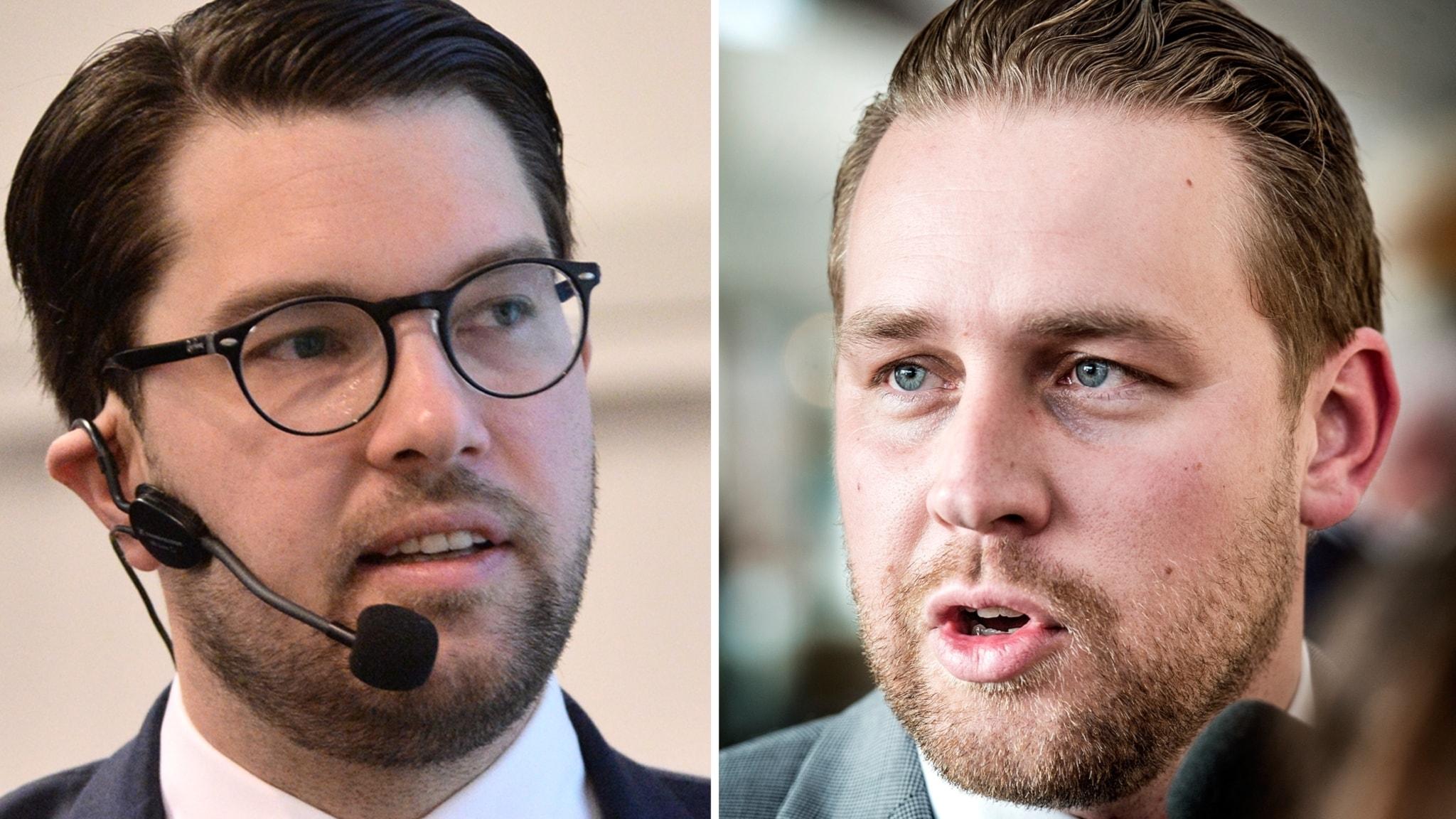 Sweden Democrats in Wall Street Journal: Trump is right  - Radio Sweden