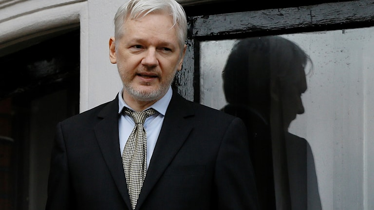 Julian Assange. Foto: Kirsty Wigglesworth.