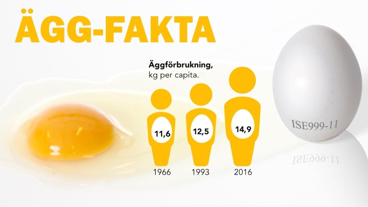 näringsvärde ägg