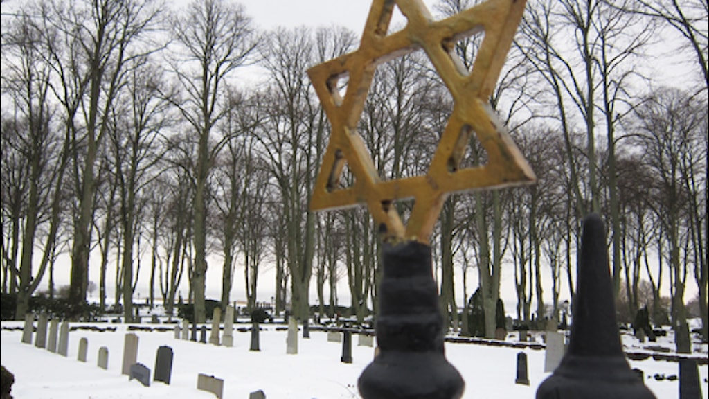 International Holocaust Remembrance Day.
