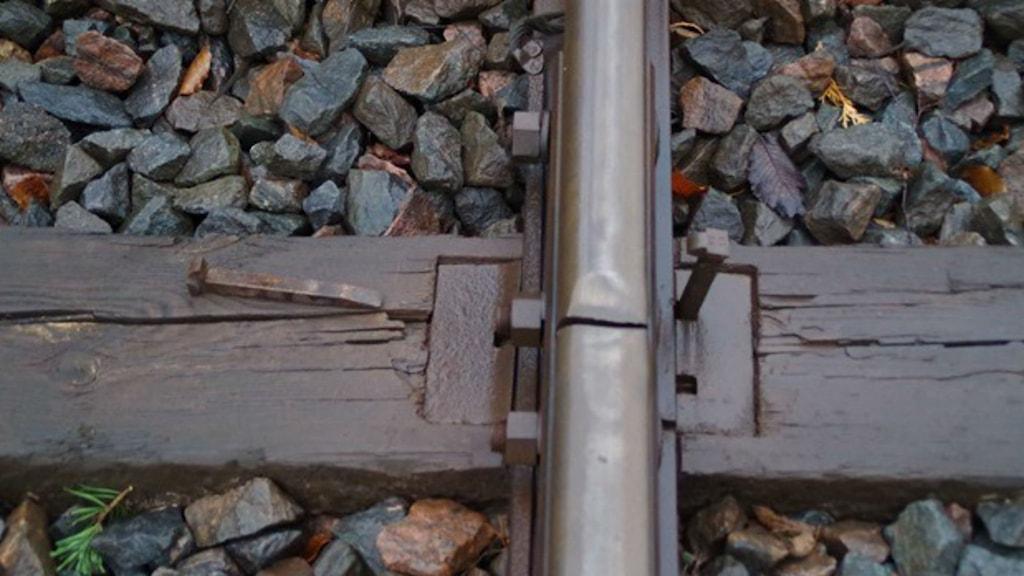 Järnvägsräls med spik uppdragen på Viskadalsbanan. Foto: Bengt Bertilsson