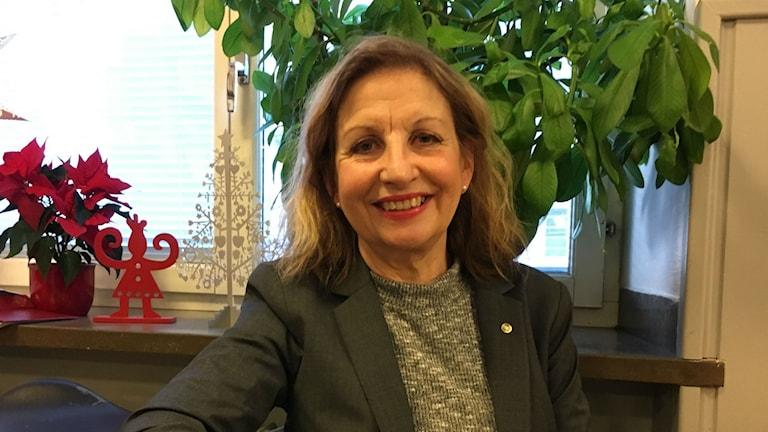 Birthe Wallin, chef Skånes stadsmission