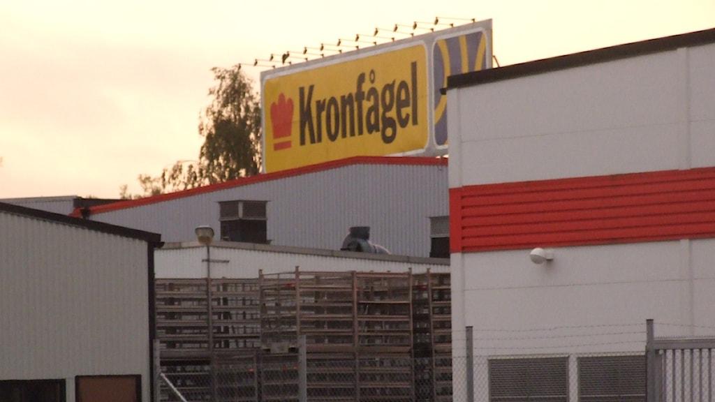 Kronfågels före detta anläggning i Kristianstad. Foto: Rickard Sturesson/SR Kristianstad