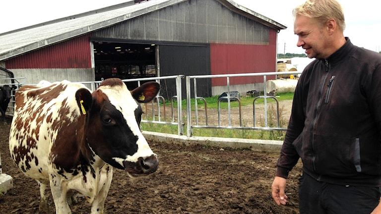 Mjölkbonden Peter Nilsson