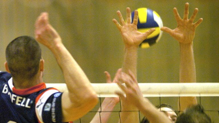 En herrmatch i volleyboll. Foto: Tomas Oneborg/Scanpix