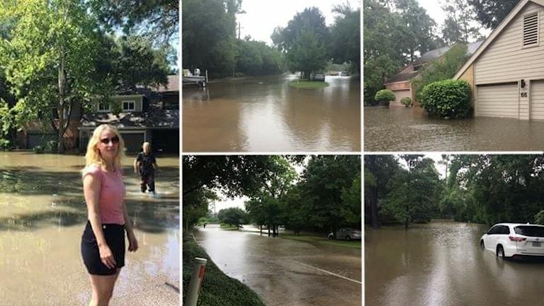 Bildkollage med översvämningsbilder