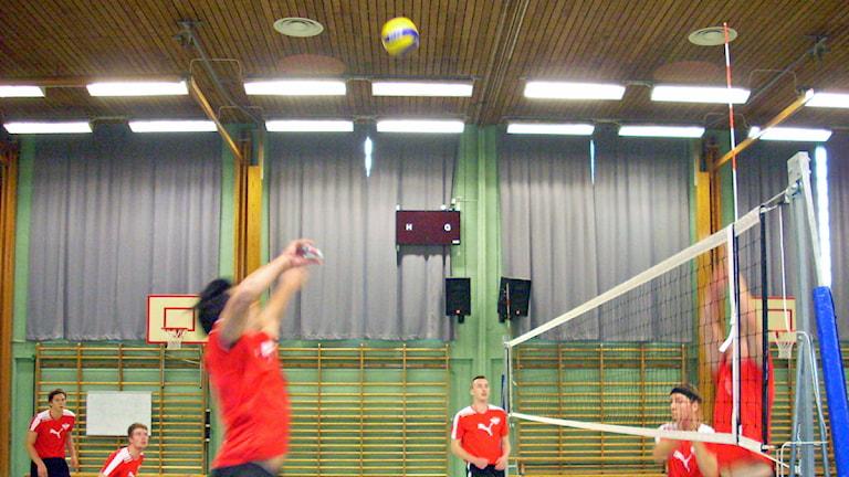 ÖVK tränar i Örkelljunga idrottshall. Foto: Roger Bengtsson/Sveriges Radio