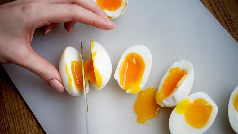 Kokta ägg skärs i halvor. Foto: Jessica Gow/TT